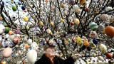 L'uomo che decora ogni anno l'albero con 10.000 uova di Pasqua dipinte a mano