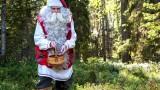 Babbo Natale raccoglie mirtilli in Lapponia in Finlandia – Estate di Babbo Natale a Rovaniemi