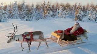 Corsa delle renne di Babbo Natale in Lapponia dall'alto – Rovaniemi – Finlandia