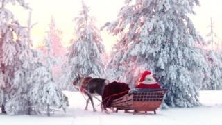 I segreti delle renne di Babbo Natale – Lapponia – Finlandia – Rovaniemi Villaggio di Babbo Natale