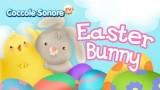 """Il coniglietto di Pasqua """"Easter Bunny"""""""