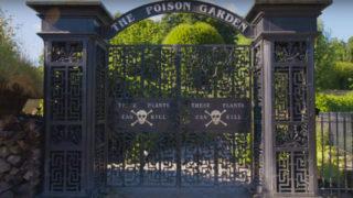 Poison Garden: viaggio nel giardino dei veleni, il parco più pericoloso e del mondo