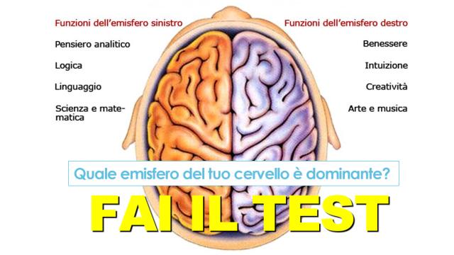 Sei più logico o creativo? Quale emisfero del tuo cervello è dominante? FAI IL TEST