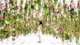 L'installazione artistica del giardino con 2300 fiori fluttuanti
