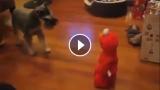 Al cane non piace il Muppet Elmo che se la ride