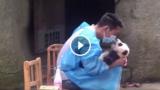 Il baciatore di Panda: e' un duro lavoro, ma qualcuno deve pur farlo.