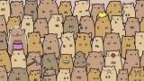 Aguzzate la vista: riuscite a trovare la PATATA tra i CRICETI in meno di 5 secondi?