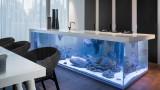 La cucina eco-chic con acquario incorporato