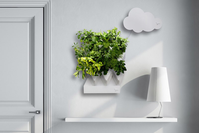 Small_Plug_Plant_Smart_Indoor_Garden