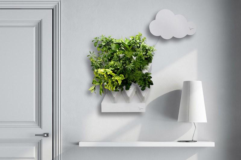 Small_Plug_Plant_Smart_Indoor_Garden