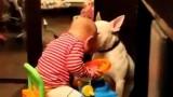 ALLARME!!! Aggressione su un animale in corso!!! ;-)