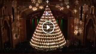 Questo è l'Albero di Natale più SPETTACOLARE del mondo!