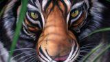 Questa tigre non è quello che sembra…