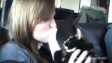 Animali che odiano essere baciati