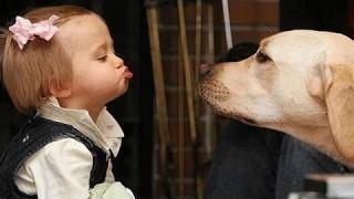 Bambini che parlano con i cani