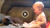 Ogni bimbo dovrebbe avere un gatto…