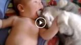 Questo gatto si è innamorato del bebè…