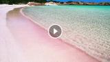 È italiana la spiaggia rosa più bella del mondo