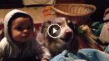 """Il cane dice """"mamma"""" per primo, ma il bambino non gradisce :-)"""