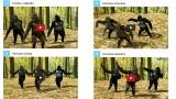 Vota le 4 versioni musicali del divertente video dei GORILLA