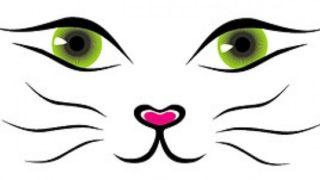 Conosci il linguaggio dei gatti? – FAI IL TEST