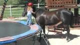 Come salire a cavallo a 3 anni