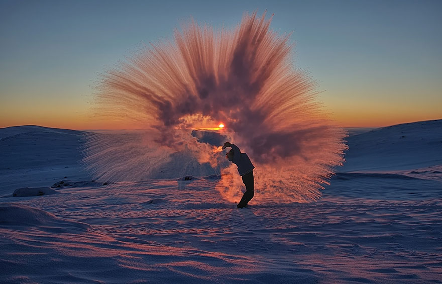 darlin_tossed-tea-arctic-photo-michael-davies-1