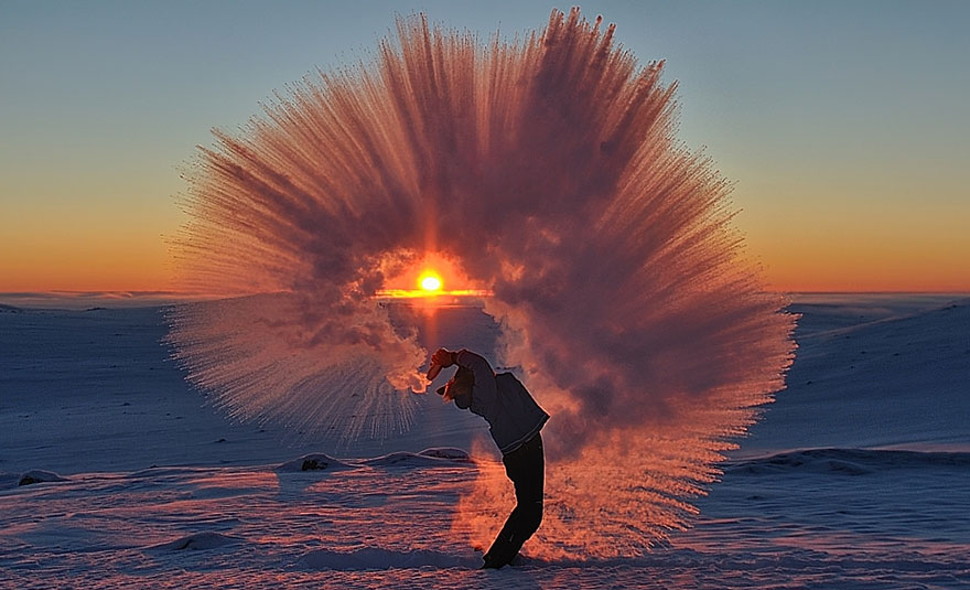 darlin_tossed-tea-arctic-photo-michael-davies-2