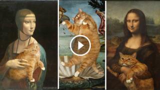 L'Arte è più bella con i Gatti
