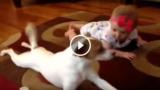 La piccola non riesce a gattonare e il cane le fa vedere come si fa