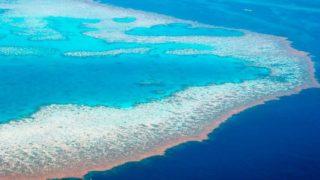 Le barriere coralline più belle del mondo