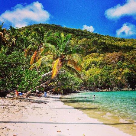 maho-bay-beach