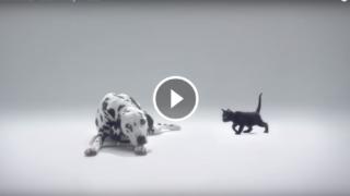 Il bellissimo spot pubblicitario sulla Prevenzione del Melanoma.