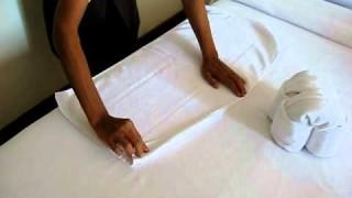 Quello che fa con questi asciugamani vi lascerà a bocca aperta!