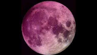 """Solstizio d'Estate: Stanotte la Luna diventerà """"ROSA"""""""