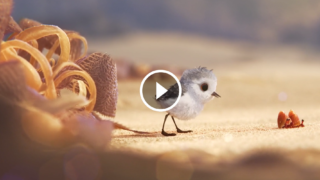 PIPER, il bellissimo corto della Pixar che ci insegna a guardare le cose da un'altra prospettiva