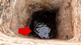 Strani rumori in fondo al pozzo: scendono giù ed ecco cosa trovano
