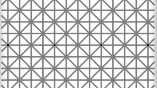 Quanti puntini conti in questa foto? (clicca per vedere la foto intera)