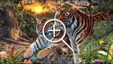 Quante tigri ci sono in questa foto? Riesci a vederle tutte?