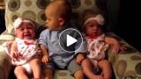 Bimbo incontra due gemelle per la prima volta e la sua espressione diviene adorabilmente confusa :)