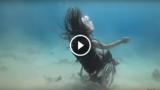 Cercando la libertà sott'acqua con la sua sedia a rotelle….
