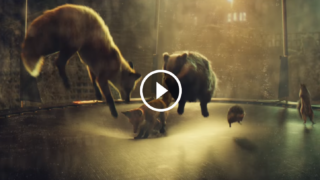 Lo spot di John Lewis per il Natale 2016 è comico: un cane prende possesso del regalo della bambina