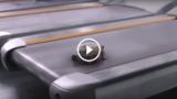 Cosa fa una tartaruga sul tapis roulant?