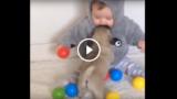 Attenzione questo video contiene un sovraccarico di tenerezza!