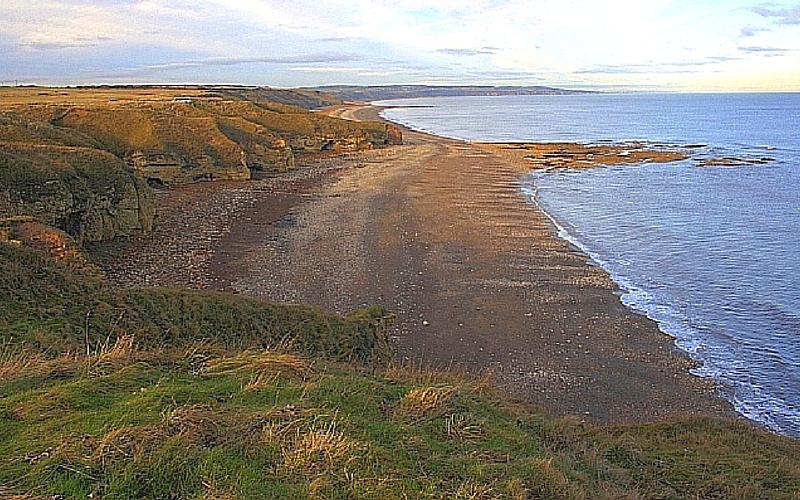 tesori-spiaggia-mare-ambra-grigia