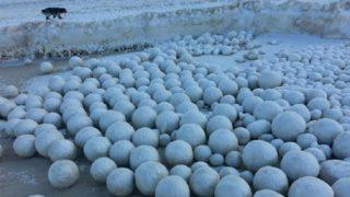 Il mistero delle migliaia palle di neve giganti sulle sponde del Golfo di Ob in Russia
