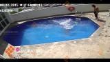 Video terrificante: Messico, getta la figliastra ripetutamente in piscina e la piccola muore annegata